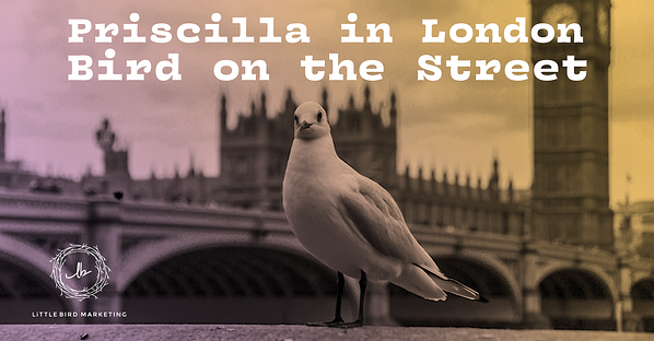 Priscilla in London Bird on the Street