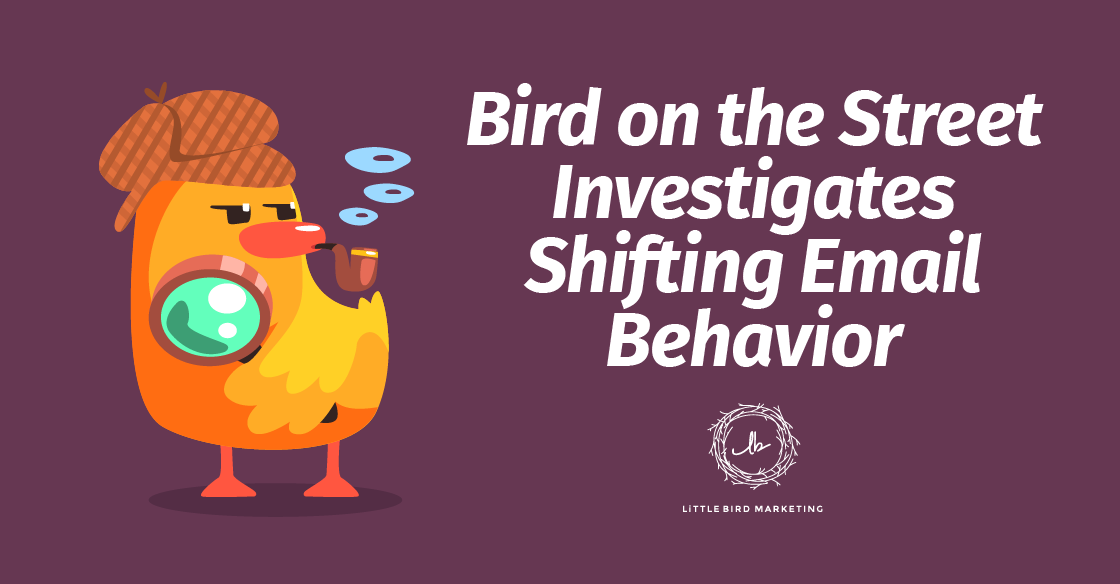 Bird on the Street Investigates Shifting Email Behavior