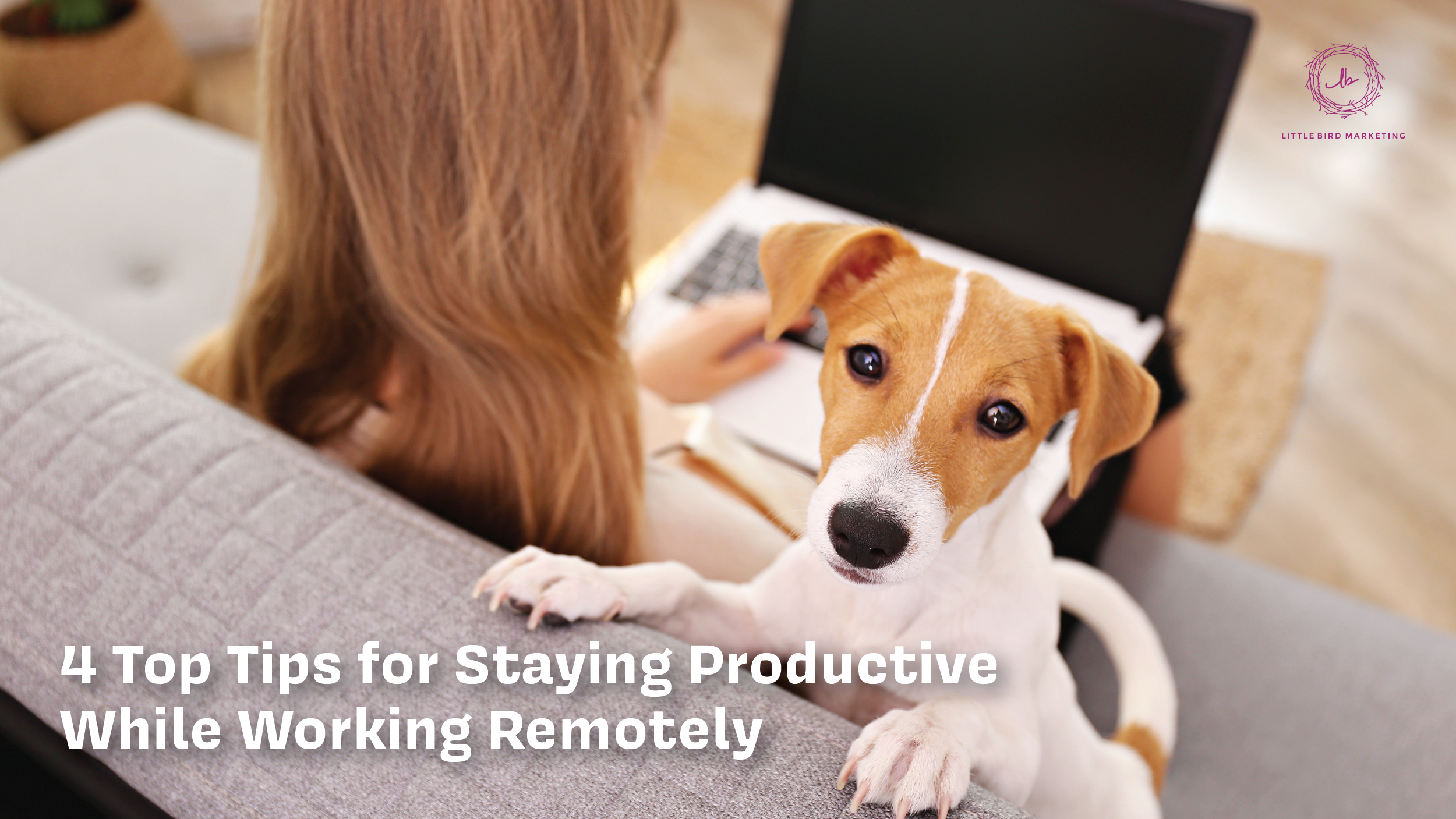 4 Top Tips for Staying Productive While Working Remotely