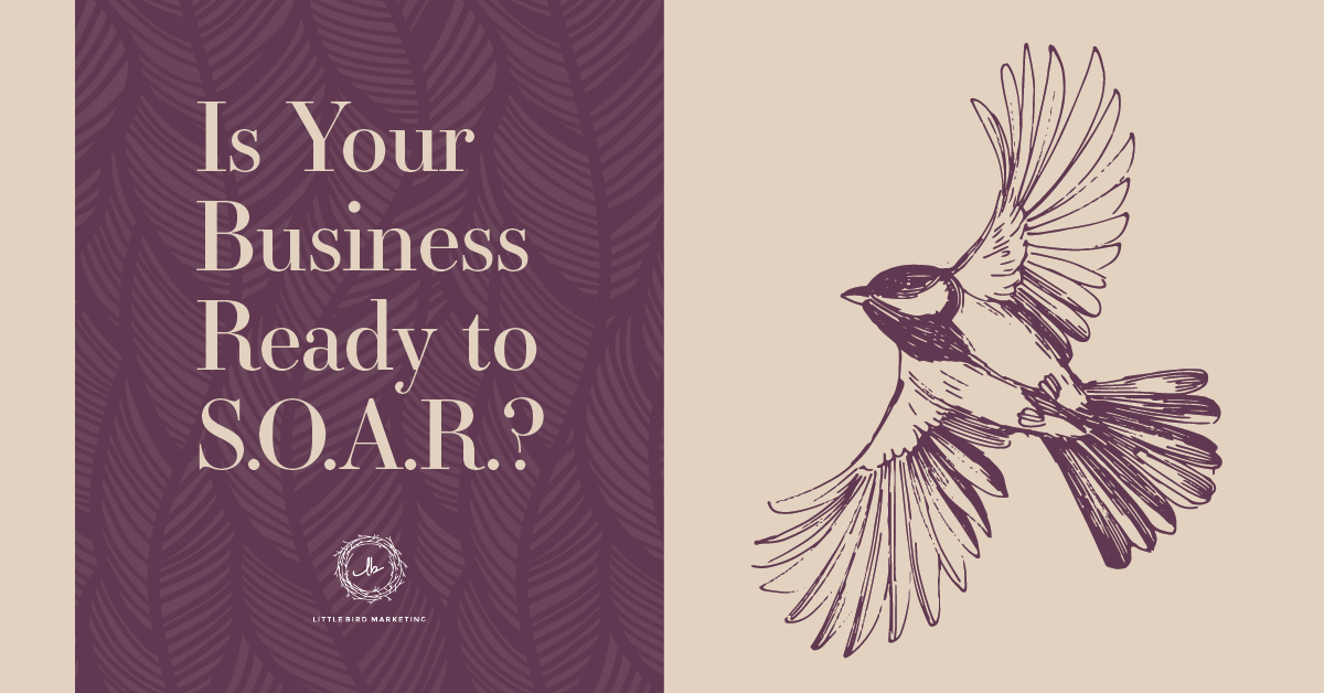 Is Your Business Ready to S.O.A.R.?