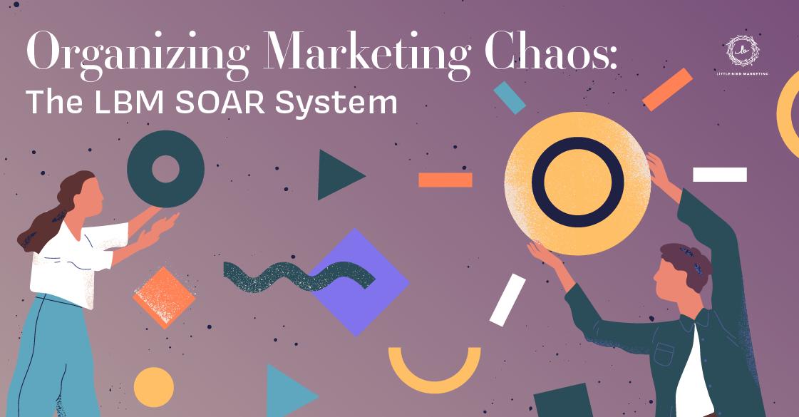 Organizing Marketing Chaos: The LBM SOAR System