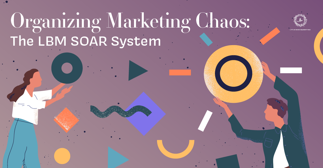 Organizing Marketing Chaos: The LBM SOAR System